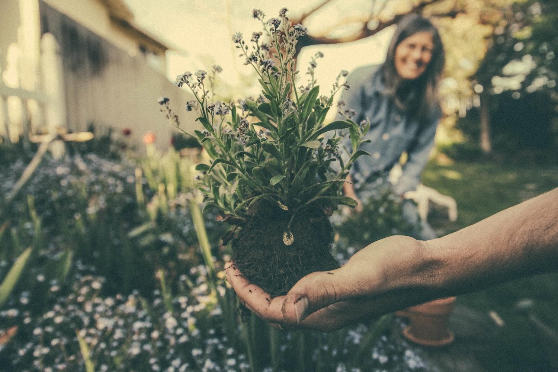 Un jardin sans se fatiguer, c'est possible ! 1