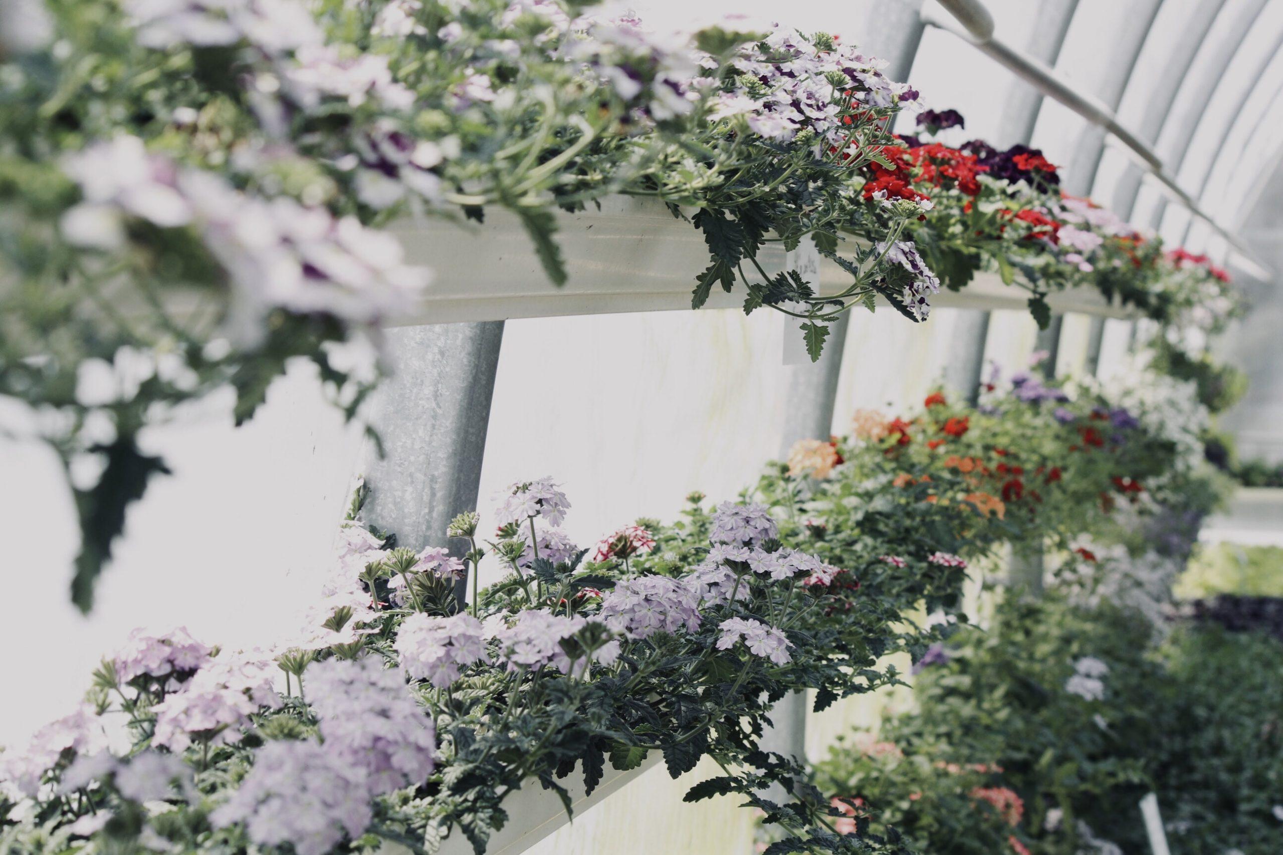 Devenir jardinier paysagiste : comment faire ? 3