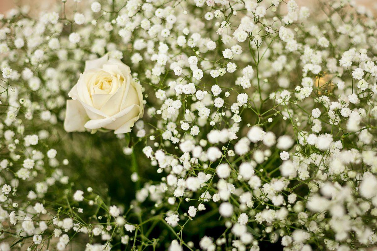 Bien choisir les fleurs pour un enterrement 2